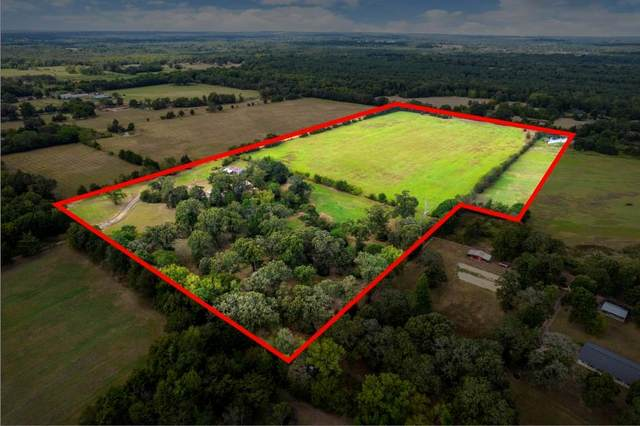 340 Cr 2524, Leesburg, TX 75451 (MLS #14691696) :: Front Real Estate Co.