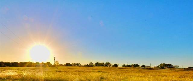 TBD Loggins Trail, Poolville, TX 76487 (MLS #14692047) :: Trinity Premier Properties