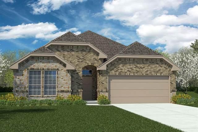 1229 Shackleford Lane, Weatherford, TX 76087 (MLS #14692263) :: Potts Realty Group