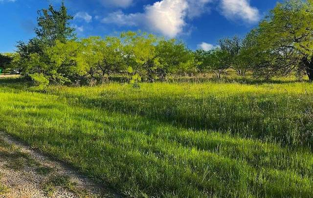 24106 Stonewood Drive, Whitney, TX 76692 (MLS #14692640) :: The Chad Smith Team