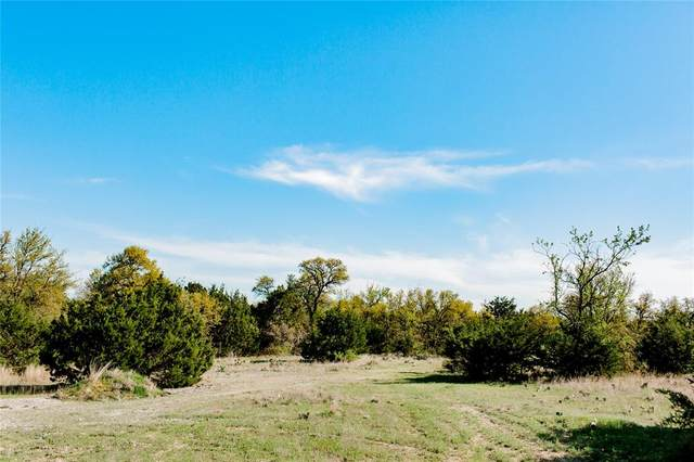 101 E Stage Coach Trail, Weatherford, TX 76085 (MLS #14692843) :: Potts Realty Group