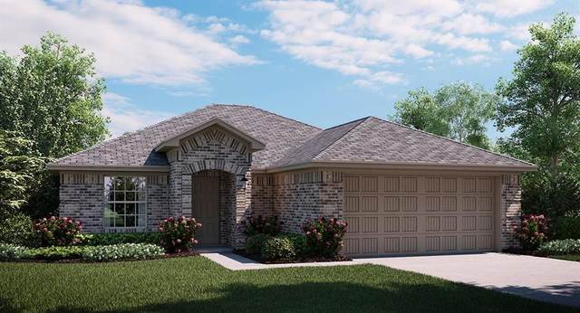 4604 Melanite Road, Little Elm, TX 75068 (MLS #14693005) :: 1st Choice Realty