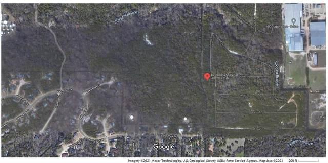 40 Pamela Street, Cedar Hill, TX 75104 (MLS #14693275) :: Beary Nice Homes