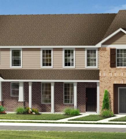 2708 Baneberry Lane, Mesquite, TX 75150 (MLS #14693740) :: Real Estate By Design