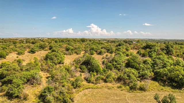 TBD 5 Oak Ridge Estates, Springtown, TX 76082 (MLS #14694086) :: Justin Bassett Realty