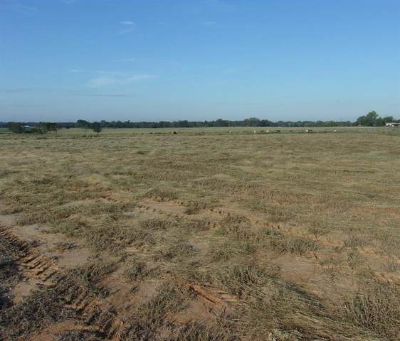 5600 Farm Road 1567, Sulphur Springs, TX 75482 (MLS #14694330) :: Potts Realty Group