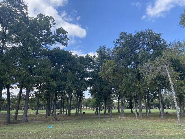 199 Saint Andrews, Mabank, TX 75156 (MLS #14694518) :: The Star Team | Rogers Healy and Associates