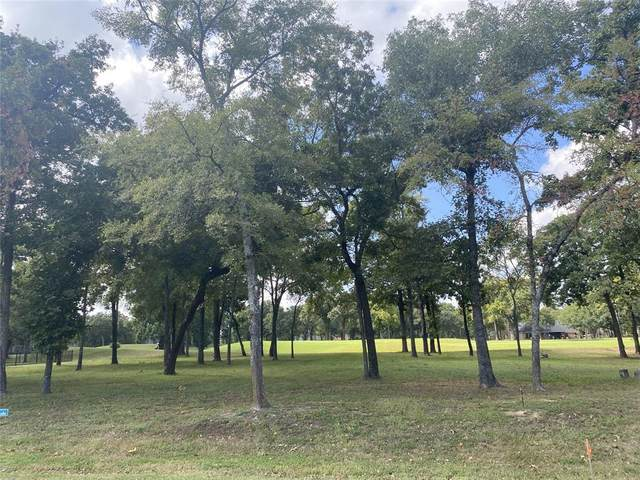 207 Saint Andrews Drive, Mabank, TX 75156 (MLS #14694525) :: The Star Team | Rogers Healy and Associates