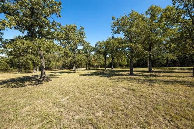 TBD Lot 54 And 55, Glen Rose, TX 76043 (MLS #14695188) :: The Hornburg Real Estate Group
