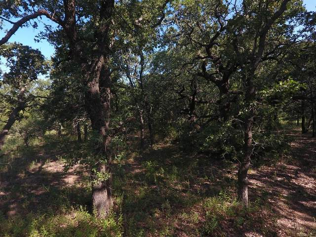 408 Cr 252, Rising Star, TX 76471 (MLS #14695387) :: The Mitchell Group
