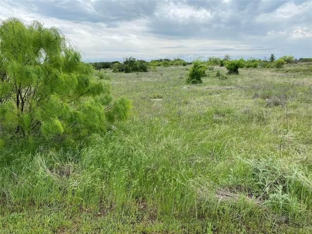 15 Oakland Hills Court, Graford, TX 76449 (MLS #14695933) :: Lisa Birdsong Group | Compass