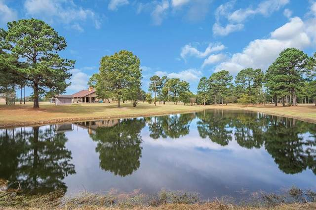 11790 Us Highway 175 E, Larue, TX 75770 (MLS #14696186) :: Epic Direct Realty
