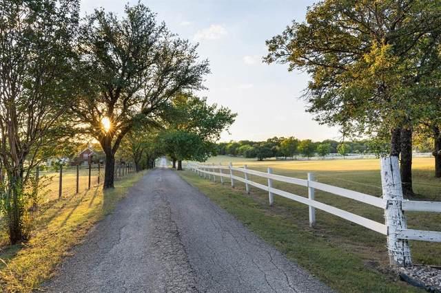 4007 Windream Lane, Parker, TX 75002 (MLS #14696571) :: HergGroup Dallas-Fort Worth