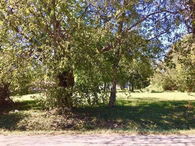 704 S Medora Street, Terrell, TX 75160 (MLS #14696865) :: Jones-Papadopoulos & Co