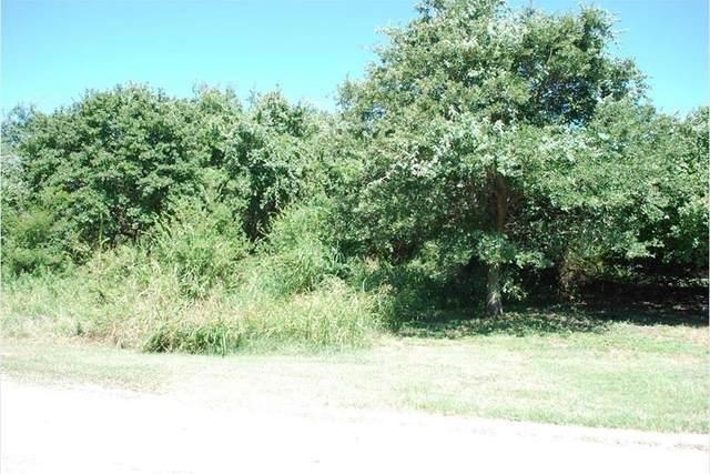 31001 Whispering Meadow Drive, Whitney, TX 76692 (MLS #14697078) :: Jones-Papadopoulos & Co