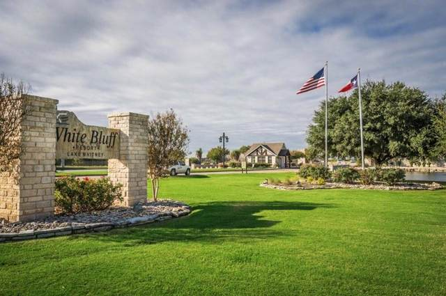 12033 Shady Creek Drive, Whitney, TX 76692 (MLS #14697613) :: Jones-Papadopoulos & Co