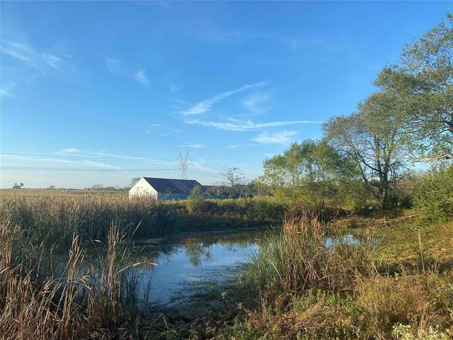 49acres County Road 1114, Brashear, TX 75420 (MLS #14697836) :: Front Real Estate Co.
