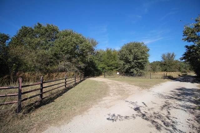 667 Pr 1452, Chico, TX 76431 (MLS #14698088) :: The Hornburg Real Estate Group