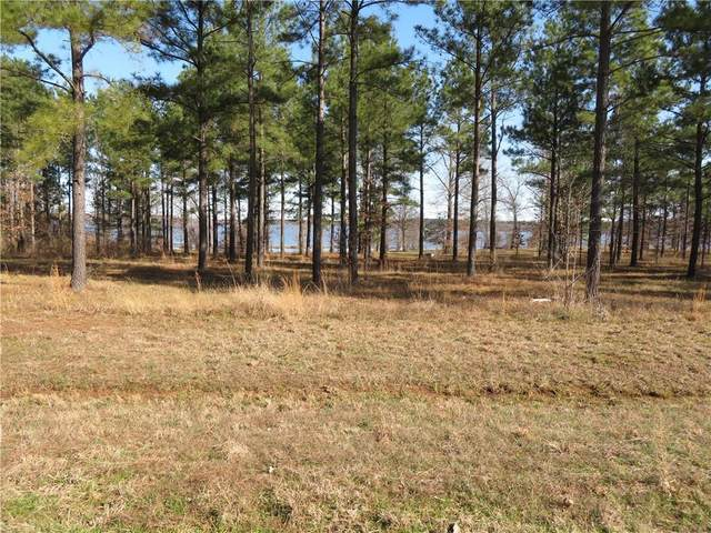 5 Eagle View North #5, Lewisville, AR 71845 (MLS #280280NL) :: The Mauelshagen Group