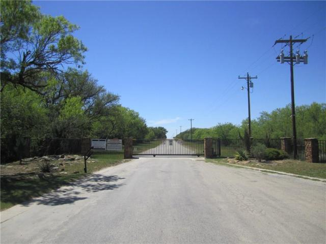 Lot252 Lakeside Circle, May, TX 76857 (MLS #13196283) :: EXIT Realty Elite
