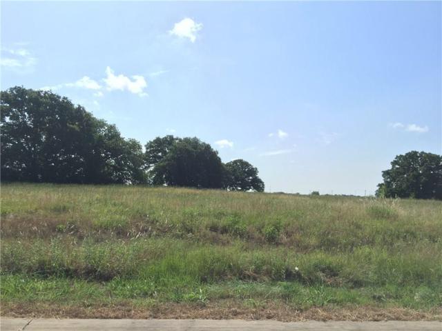 2055 Eastfield Drive, Wills Point, TX 75169 (MLS #13408963) :: Team Hodnett