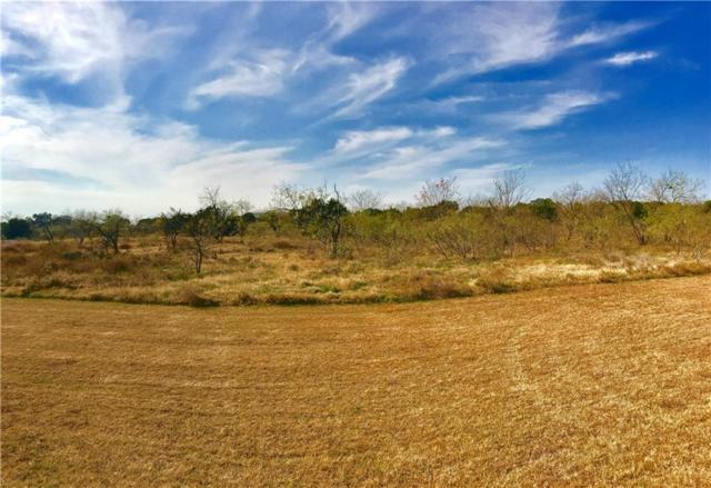 3000 Fm 1713 / Star Ranch Drive, Whitney, TX 76692 (MLS #13519524) :: Ann Carr Real Estate