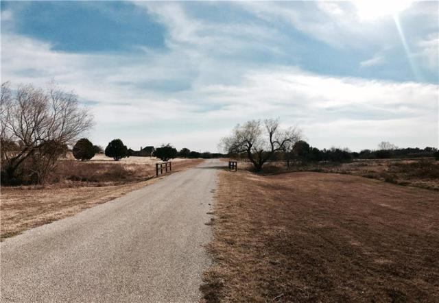 21000 Star Ranch Drive, Whitney, TX 76692 (MLS #13519545) :: Ann Carr Real Estate