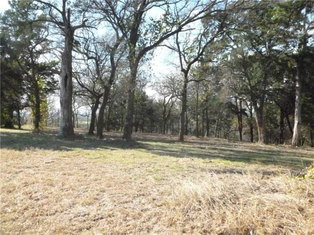 1353 Overlook Circle #938, Cedar Hill, TX 75104 (MLS #13544683) :: Team Hodnett