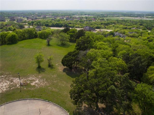 1357 Overlook Circle, Cedar Hill, TX 75104 (MLS #13562956) :: Team Hodnett