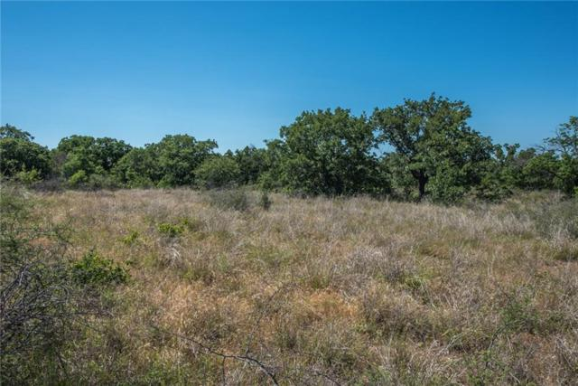E23 Arts Way, Gordon, TX 76453 (MLS #13567470) :: Front Real Estate Co.