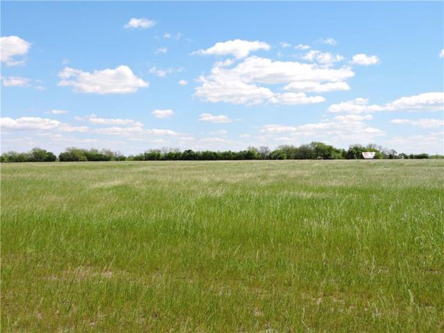 Lot 4 E State Hwy 34, Ennis, TX 75119 (MLS #13570301) :: Team Hodnett
