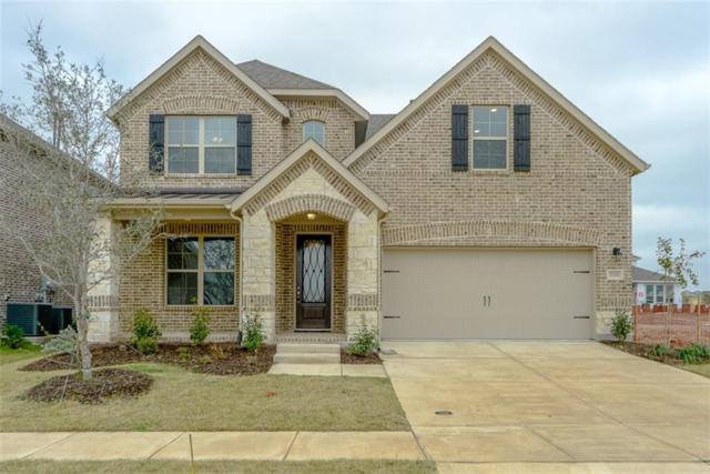 5304 Delta Blush Lane, Mckinney, TX 75070 (MLS #13597851) :: Team Hodnett