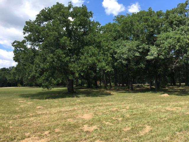 Lot 81 Hidden Oaks II, Corsicana, TX 75109 (MLS #13612380) :: The Heyl Group at Keller Williams