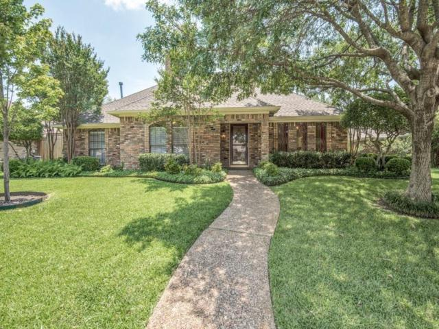 1110 E Sandy Creek Drive, Allen, TX 75002 (MLS #13634044) :: Robbins Real Estate
