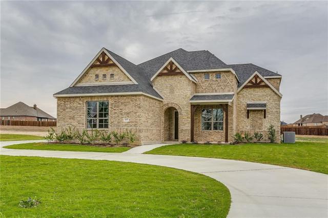 3671 Plainview Road, Midlothian, TX 76065 (MLS #13651672) :: Team Hodnett
