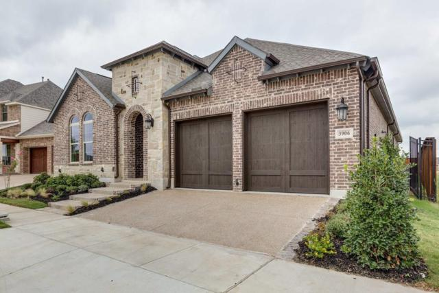 3906 Desert Hollow Way, Arlington, TX 76005 (MLS #13674680) :: RE/MAX Pinnacle Group REALTORS