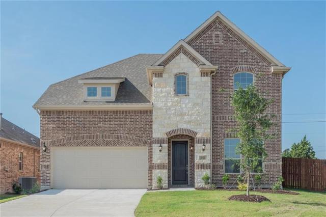 3721 Delta Drive, Mckinney, TX 75071 (MLS #13676828) :: Magnolia Realty