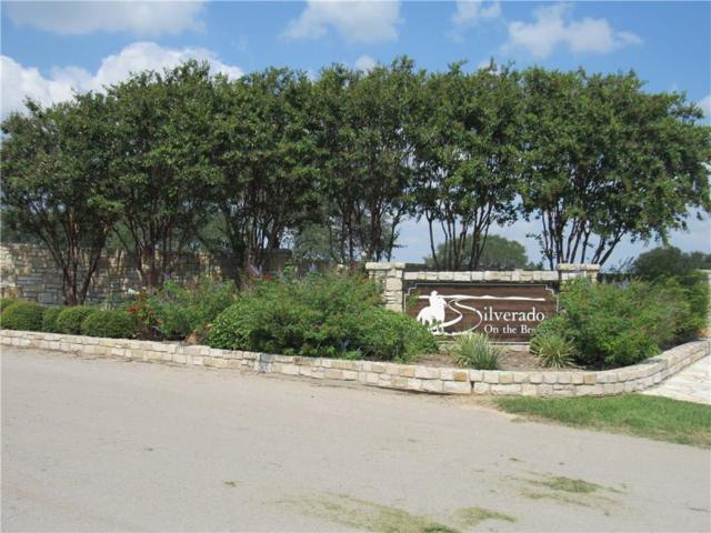 131 Silver Saddle Circle, Weatherford, TX 76087 (MLS #13683445) :: The Heyl Group at Keller Williams
