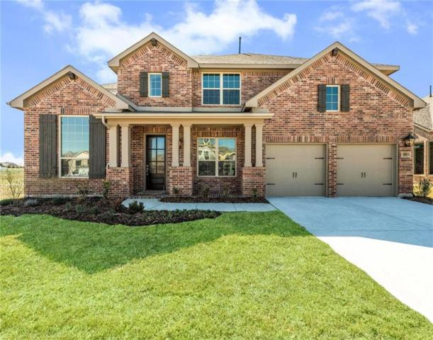 351 Lake Trail Lane, Prosper, TX 75078 (MLS #13685617) :: Team Hodnett