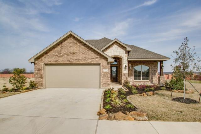 12648 Viewpoint Lane, Fort Worth, TX 76028 (MLS #13691594) :: Team Hodnett