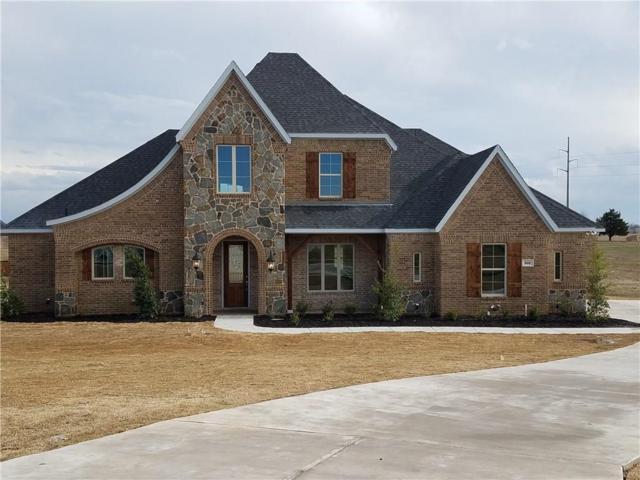 860 Reese Drive, Midlothian, TX 76065 (MLS #13696531) :: Team Hodnett