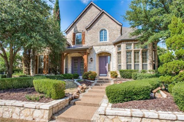 7908 Daylily Way, Frisco, TX 75033 (MLS #13699530) :: MLux Properties