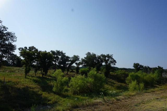 Lt 356 Canyon Wren Loop, Possum Kingdom Lake, TX 76449 (MLS #13716127) :: North Texas Team | RE/MAX Advantage
