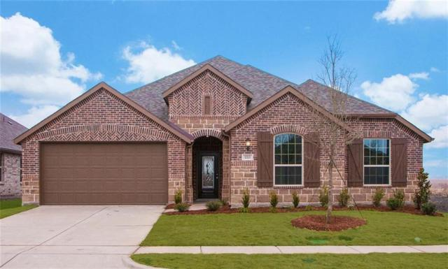 1313 Lawnview, Forney, TX 75126 (MLS #13716383) :: Team Hodnett