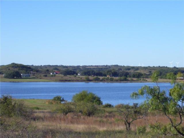 00 Comanche Lake Road, Comanche, TX 76442 (MLS #13718093) :: Team Hodnett