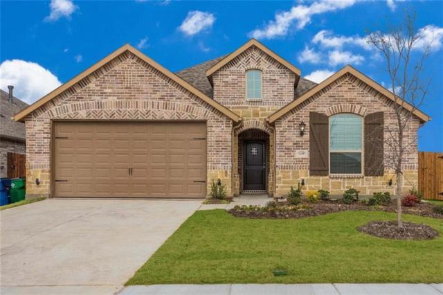 1109 Joshua Tree Lane, Celina, TX 75009 (MLS #13720415) :: Team Hodnett