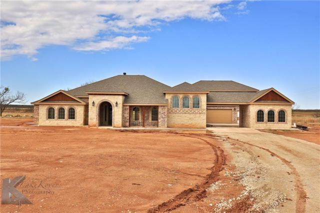 120 County Rd 256, Abilene, TX 79602 (MLS #13723510) :: The Paula Jones Team | RE/MAX of Abilene