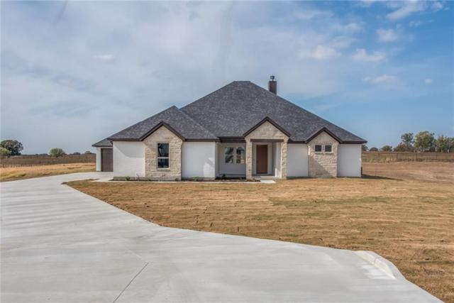 168 Eagles Crest Lane, Brock, TX 76087 (MLS #13723536) :: Team Hodnett