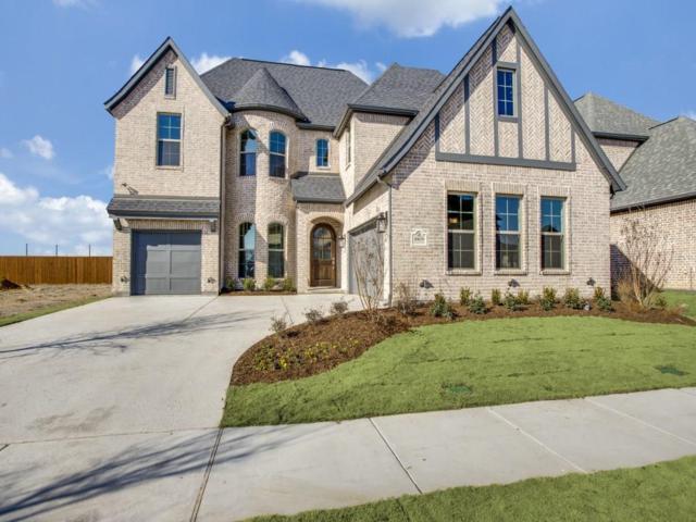 10659 Ferdinand View, Frisco, TX 75035 (MLS #13724167) :: Team Hodnett