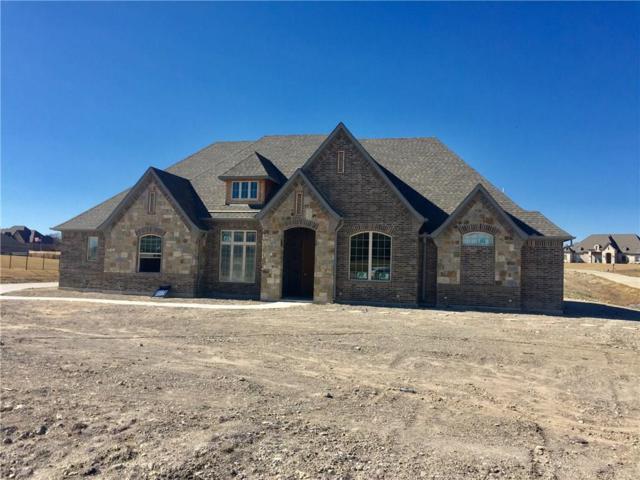 300 Bear Country Drive, Aledo, TX 76008 (MLS #13726053) :: Team Hodnett